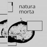 winkler-natura-morta